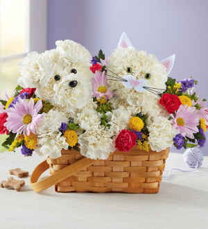 Paw-Some Pals™  in Saint Cloud, FL | Bella Rosa Florist