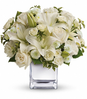 Peace and Joy Bouquet Teleflora Winter
