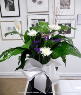 Peace Lily from Absolutely Beautiful Flowers Potted Plant PEACE LILY WITH FRESH CUT