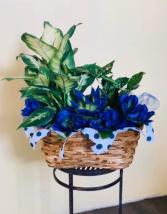 Peaceful Basket