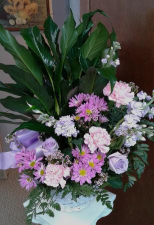Peaceful Condolence  Fresh Arrangement with Plant