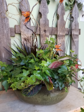 Peaceful Garden Dish Garden
