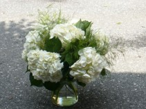 White Hydrangea and Mixed Ferns In Glass Cylinder Vase Shown at $70.00
