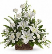 Peaceful Lilies