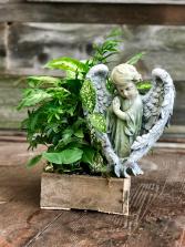 Peaceful Planter