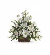 Peaceful White Lily Basket                 T228-1 Fresh Floral Arrangement