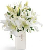 Peacefull Blessings Vase Arrangement in Sunrise, FL | FLORIST24HRS.COM