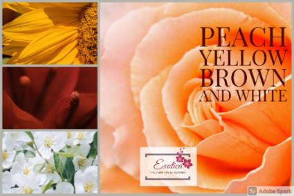 Autumn Harvest Designers Choice - Vase Arrangement