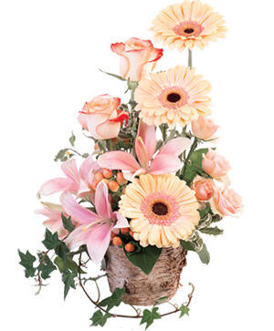 Peach Dreamer Floral Arrangement in Dewitt, MI | Howe's Greenhouse & Flower Shoppe, LLC