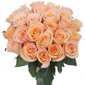 Peach Roses Rose Arrangement