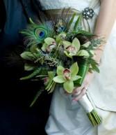 Peacock La Flor