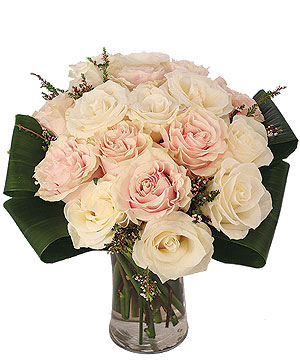 Pearl Perfection Rose Arrangement in Coral Springs, FL | DARBY'S FLORIST