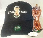 PENN STATE baseball hat  Exclusive design to George's Floral!