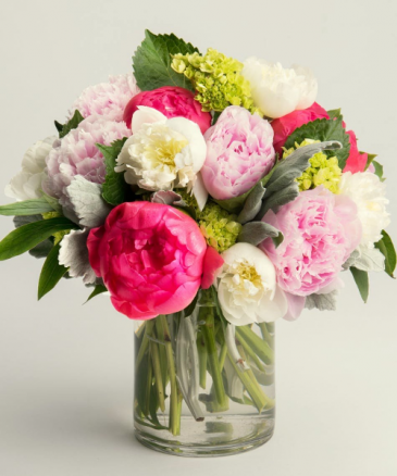 Peonies Galore Vased Arrangement Semi-Compact