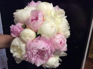 Peonies Garden  in Spring, TX | ANGEL'S DIVINE FLOWERS