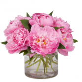 SPECIAL  Peonies In Pink