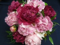 Peony Bridesmaid Bouquet Bridesmaid Bouquet