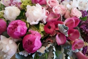 Peony Garden  in Northport, NY | Hengstenberg's Florist