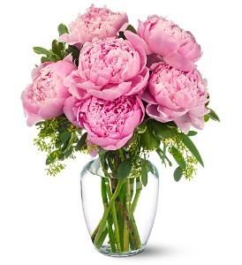 Peony love   in Ozone Park, NY   Heavenly Florist