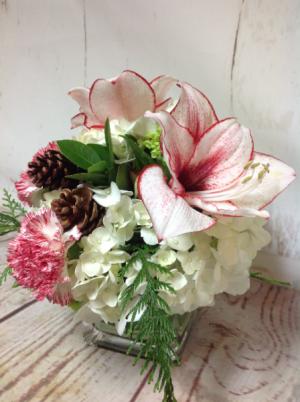 Peppermint  in Easton, CT | Felicia's Fleurs