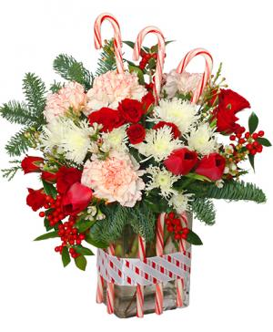 PEPPERMINT PLEASURES Deluxe Christmas Bouquet in Albany, NY | CENTRAL FLORIST