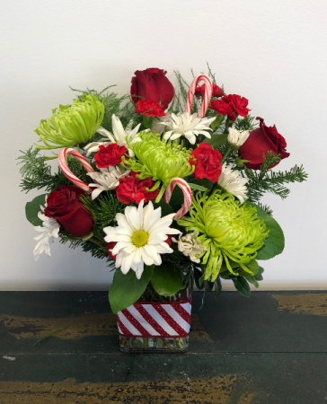 Peppermint Splash Vase Arrangement