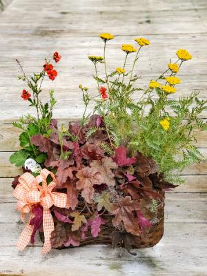 Perennial Basket   in Warsaw, IN | ANDERSON FLORIST & GREENHOUSE