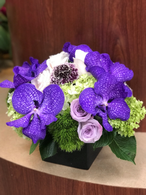 Perfect In Purple  in Teaneck, NJ | Teaneck Flower Shop (A.A.A.A.A.)