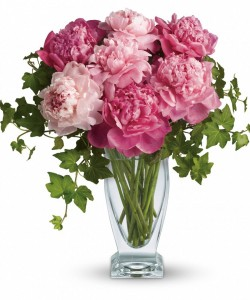 """""""Perfect Peonies"""" Just Arrived!  in Salisbury, MD 