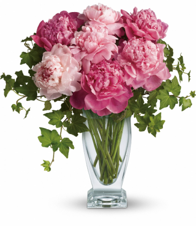 Perfect Peonies H1441A