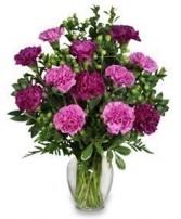 Perfectly  Purple               vased