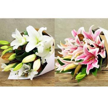 Perfumed Lilies Cuts, no vase