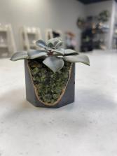 Peridot Geode Vessel | Dark Planter