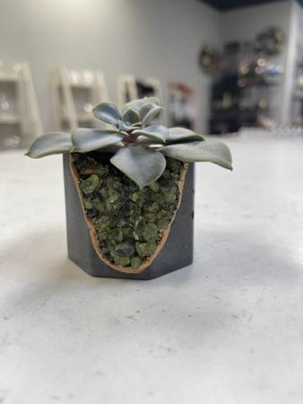 Peridot Geode Vessel   Dark Planter