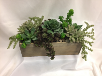 Permanent Succulent Garden Box Artificial Succulents