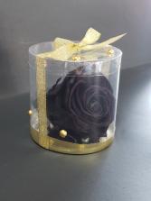 Perserved black rose  Perserved rose