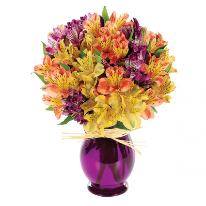Peruvian Lily Bouquet Everyday