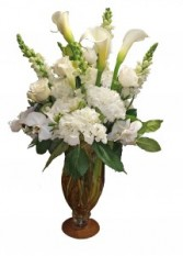 Petite Dame Blanche Cut Flowers