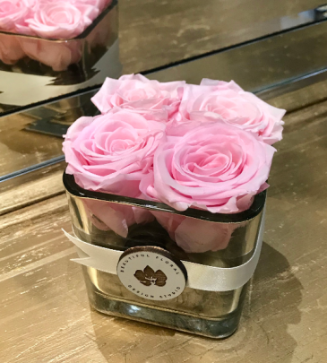 Petite Preserved Roses Preserved Roses