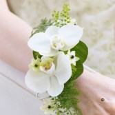 phalaenopsis orchid corsage
