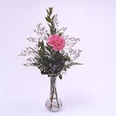 PHI MU- 1 Carnation budvase 1 PINK OR WHITE CARNATION WITH GREENERY AND RIBBON