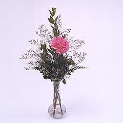 PHI MU- 1 Carnation budvase