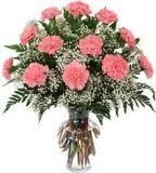 PHI MU- 1 Dozen Carnations  in Stephenville, TX | University Flowers