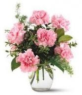PHI MU- 1/2 Dozen Carnations