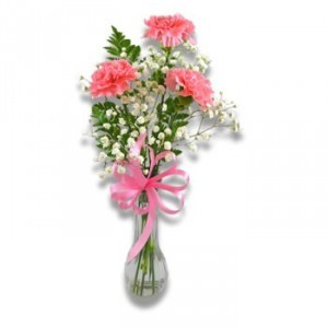 PHI MU- 3 Carnation Vase 3 PINK OR PINK/WHITE CARNATIONS WITH GREENERY AND RIBBON