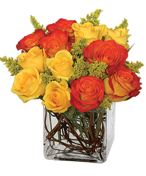 Phoenix Flame Rose Arrangement in Riverside, CA | Willow Branch Florist of Riverside
