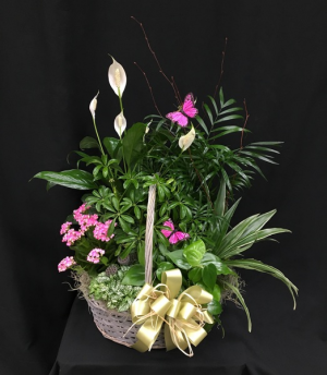 Picture Perfect Garden Basket European Garden in Kannapolis, NC | MIDWAY FLORIST OF KANNAPOLIS