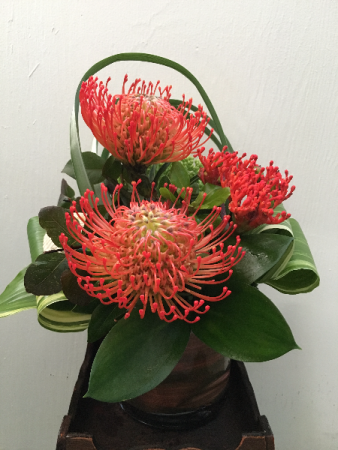 Pincushion Protea Paradise  Vase Arrangement