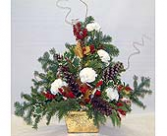Pine Arrangement With Carnations Arrangement