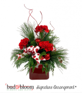 Pines and Polka Dots Bud & Bloom Signature Arrangement